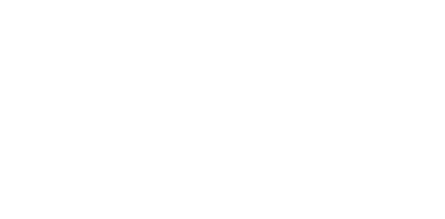 weddingstylers-logo